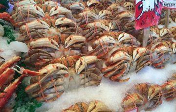 crabs-1149123_640