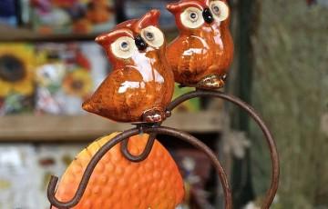 owls-441217_640