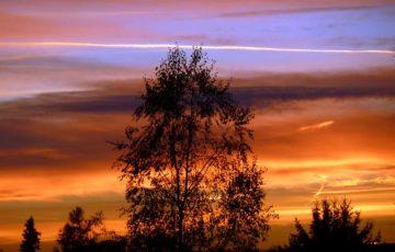 sunset-57007_640