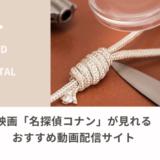映画「名探偵コナン」が見れる動画配信サイト
